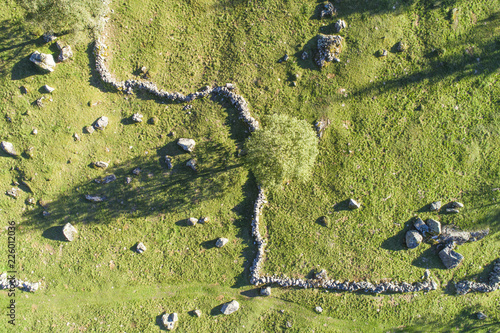 Mountain pasture seen from above. Aerial view of meadow with stone wall and tree.