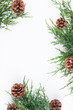 Quadro christmas background with fir branches and cones