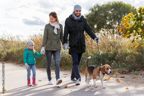 Leinwanddruck Bild family, pets and people concept - happy mother, father and little daughter walking with beagle dog in autumn