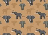 Elephant Wallpaper 2