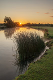Beautiful dawn landscape image of River Thames at Lechlade-on-Thames in English Cotswolds countryside - 226169429