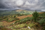 Landscape image of view from Precipice Walk in Snowdonia overlooking Barmouth and Coed-y-Brenin forest during rainy afternoon in September - 226171235