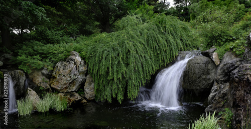 waterfall in garden,summer - 226191830
