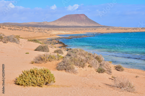 Landscape in Tropical Volcanic Canary Islands Spain - 226194819