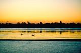Fishing the Nile - 226237644