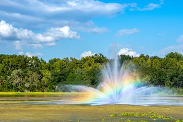 Sunlight passing through a fountain's spray on a bright sunny day creates a beautiful rainbow,. © Phil Lowe