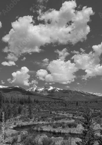Foto Murales Rocky Mountain Meadow