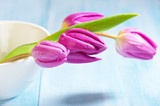 Pink Tulips. Flower background. Wooden background. Close up. Copy space. - 226299699