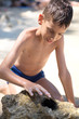 Young boy looking sea urchin