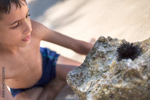 Young boy looking sea urchin