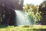 Fototapeta Fototapeta z dmuchawcami - Spraying weeds in the garden © Fokussiert