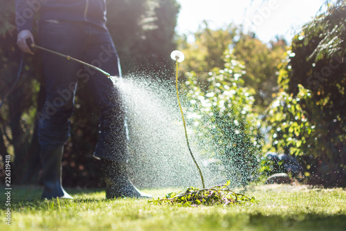 Spraying weeds in the garden - 226319418