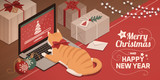 Cat watching Christmas app loading on the laptop