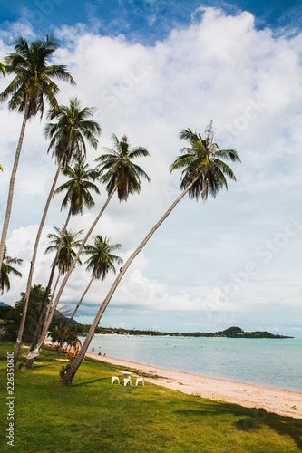 Fototapeten Strand Samui Beach in Thailand
