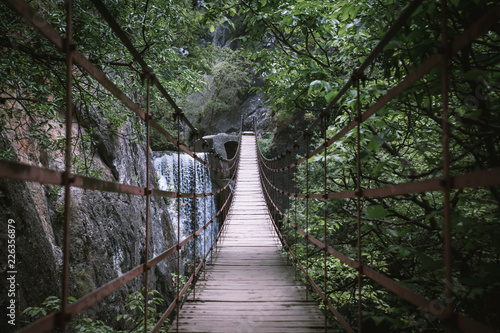 wooden bridge in the forest - 226356879