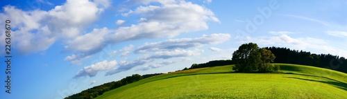 Landschaft grüne Wiese und Wälder - 226368670