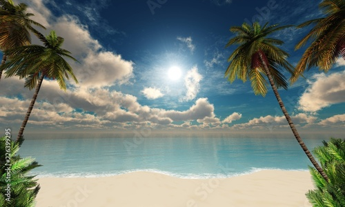 Tropical beach with palm trees at sunset - 226399295