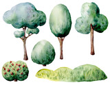 Watercolor green trees and bushes set. Hand painted natural elements isolated on white background. Forest illustration for design, print. - 226405087
