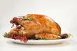 Leinwanddruck Bild - Thanksgiving Turkey on White