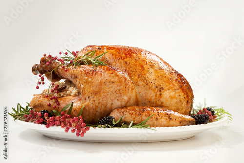 Leinwanddruck Bild Thanksgiving Turkey on White