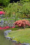 Colorful japanese garden in spring time