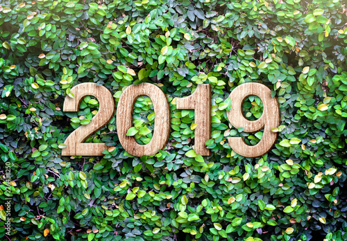 Foto Murales 2019 happy new year wood texture number on Green leaves wall background,Nature eco concept,organic greeting card holiday.leave copy space for adding text.