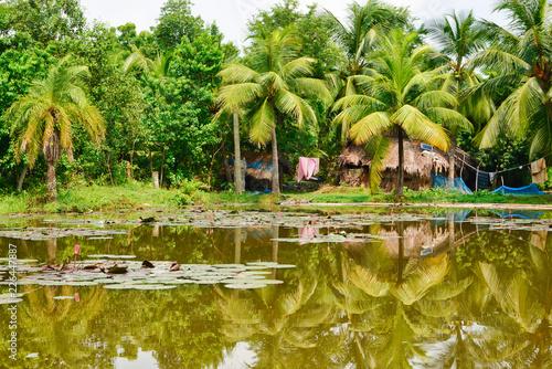 Foto Murales farmhouse at the lagoon