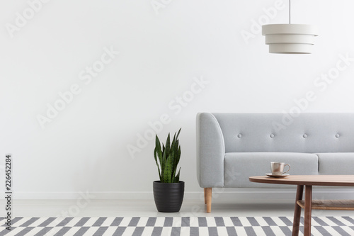 Leinwandbild Motiv Stylish lamp above grey modern sofa in white living room interior with plant, carpet and wooden coffee table, real photo