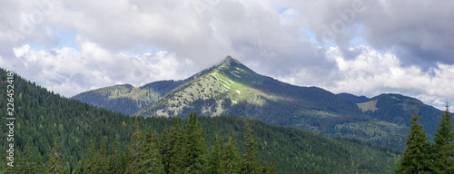 Mountain range with stone placers in the Carpathian Mountains