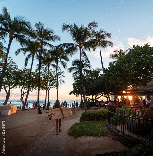 Hawaii - 226456073