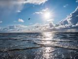 Die Wellen der Nordsee - 226479888