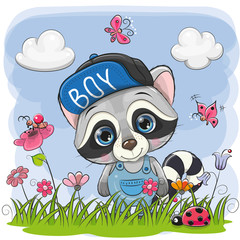 Cute Cartoon Raccoon on a meadow