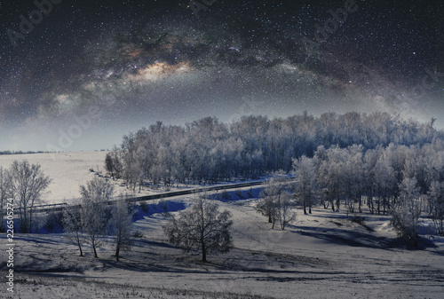 Winter landscape, forest covered by snow with sky full of stars © SasinParaksa