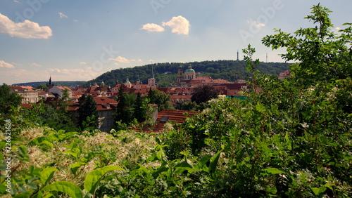 Praga, stolica Czech - piękne stare miasto wzniesione wśród zielonych wzgórz