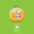 vector funny cartoon cute orange character isolated on green background. My name is orange vector concept. super funky citrus fruit summer food character - 226537467