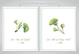 Cards templates for wedding invitations, greating card or other your design. Illustration of colored pencils, green leaves of ginkgo biloba. - 226563888