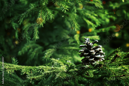 christmas or new year background with a festive fir tree and pine cones selective focus
