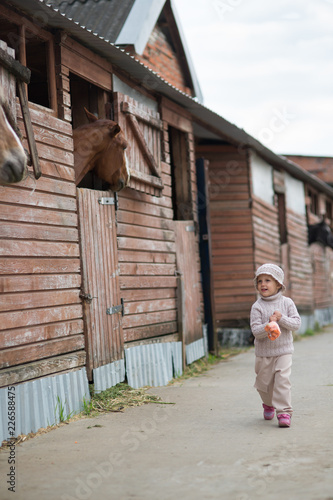 Little Girl feeds the horses