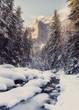 Fantastic winter ladscape. Majestic alpine mountain on the background. Dramatic scene. Natupe background. Retro Style. Instagram Filter