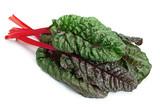 Chard leaf closeup - 226670875