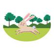 rabbit cute cartoon - 226705433