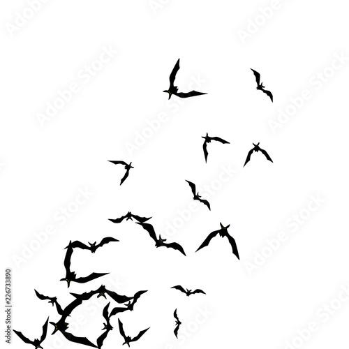 fototapeta halloween background with black bats on white halloween