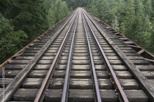 Fototapeta Old abandoned railroad train track