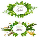 Natural herbal spices and herbs - 226783870