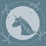 Magic unicorn and constellations. - 226796438