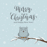 Lettering Merry Christmas on Winter Background and Owl
