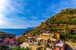 Colorful houses with storied vineyards backgroud in Manarola Village Italy  - 226819262