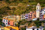 Colorful houses with storied vineyards backgroud in Manarola Village Italy