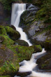waterfall in the forest - 226821025