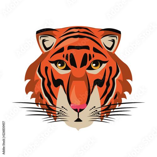 Fototapeta Tiger face cool sketch